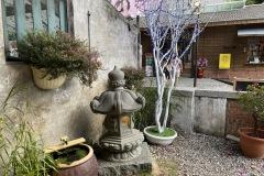 Tranquil stone garden