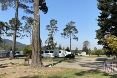 Taking a stroll through the Olema Campgrounds